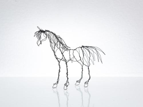 Hanna Ruijsenaars Häst002